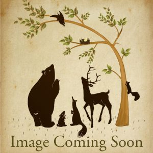 Birch-Bear-Coming-Soon