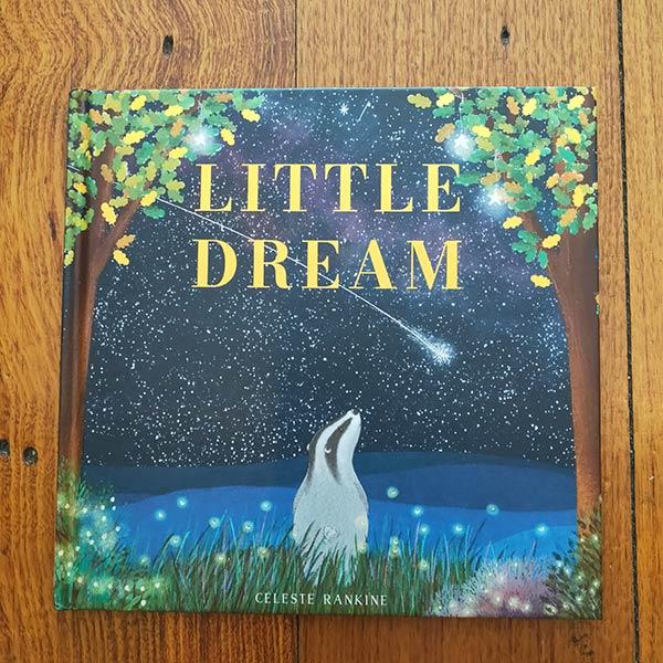 Books Little Dream