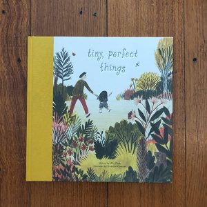 Books Tiny Perfect Things
